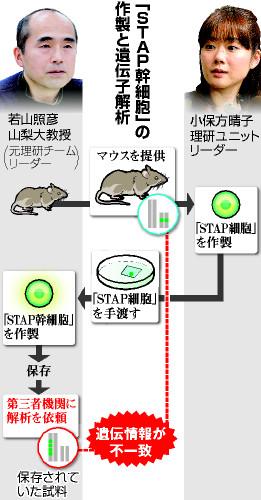 stap01